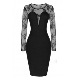 Celebrity Mesh Sleeve Bodycon Dress