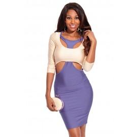 Purple Beige Two Tone Cut out Sleeves Bodycon Mini Dress