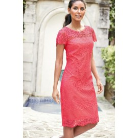 Rosy Relaxing Fit Lace Dress